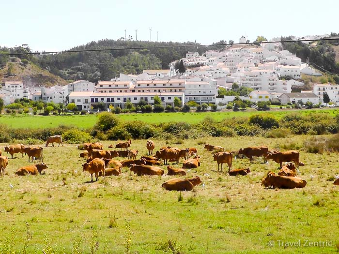 Ocecéixe valley circuit walk Algarve Portugal