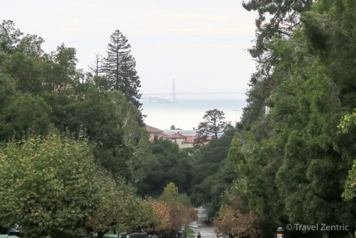 berkeley, campus, view, golden gate bridge