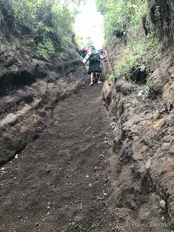 volcano acatenango hiking experiences route