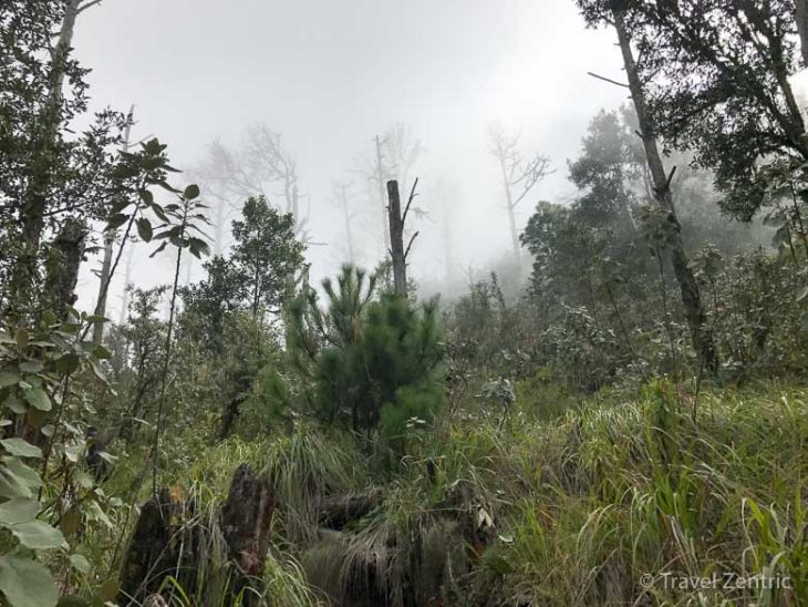 volcano acatenango nature guatemala